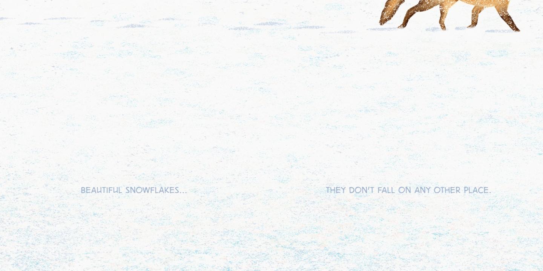 http://bartaking.com/files/gimgs/th-66_Beautiful-Snowflakes_Web.jpg